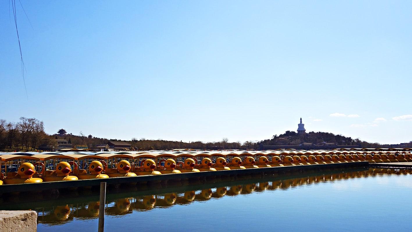 Lac de Beihai barques canards Pékin