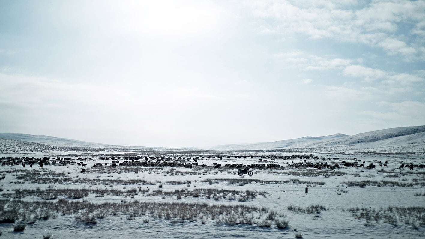 Route Orkhon moto moutons Mongolie neige ciel bleu