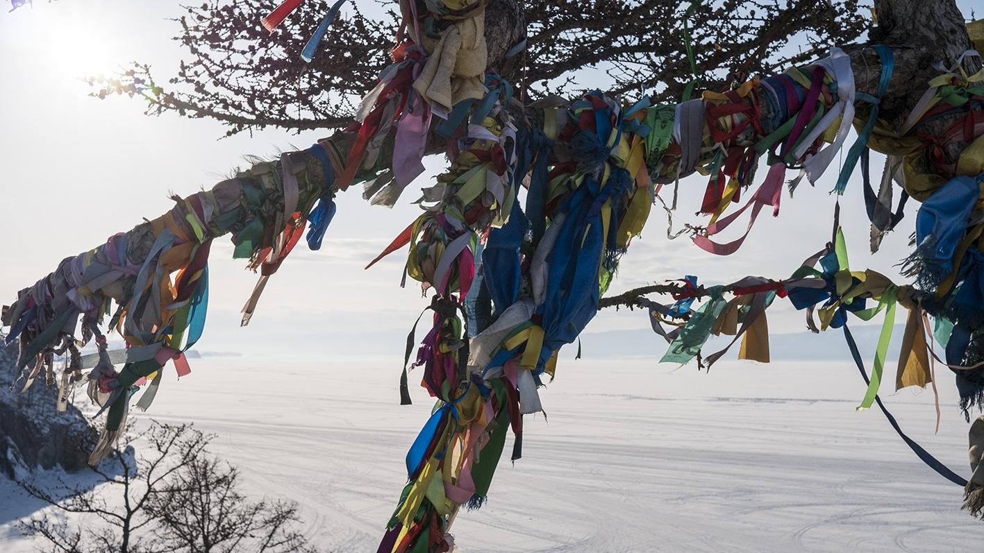 Lac Baïkal en hiver rubans arbre couleurs