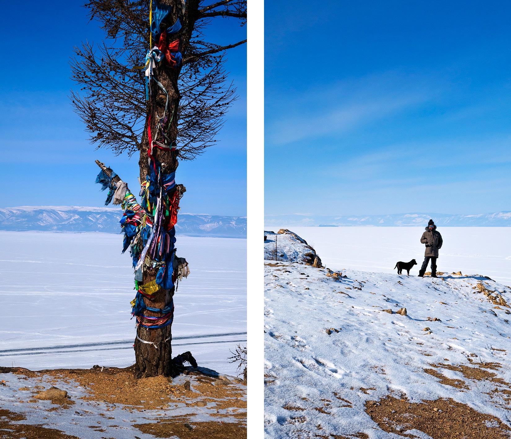 Rubans arbre couleurs lac gelé Baïkal