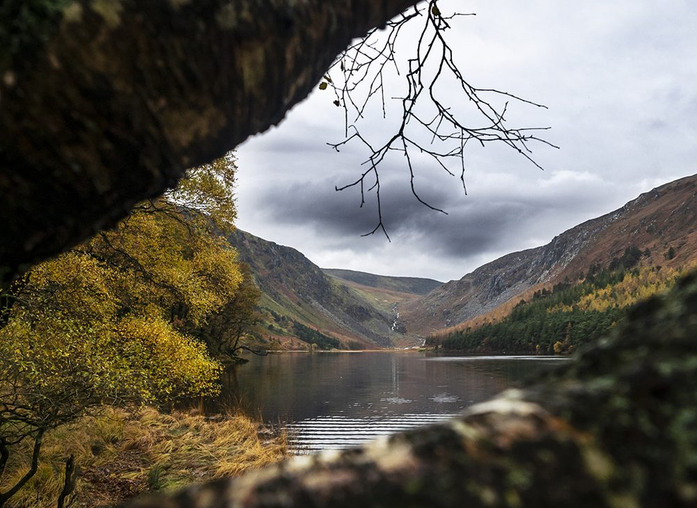 Wicklow Mountains Blog