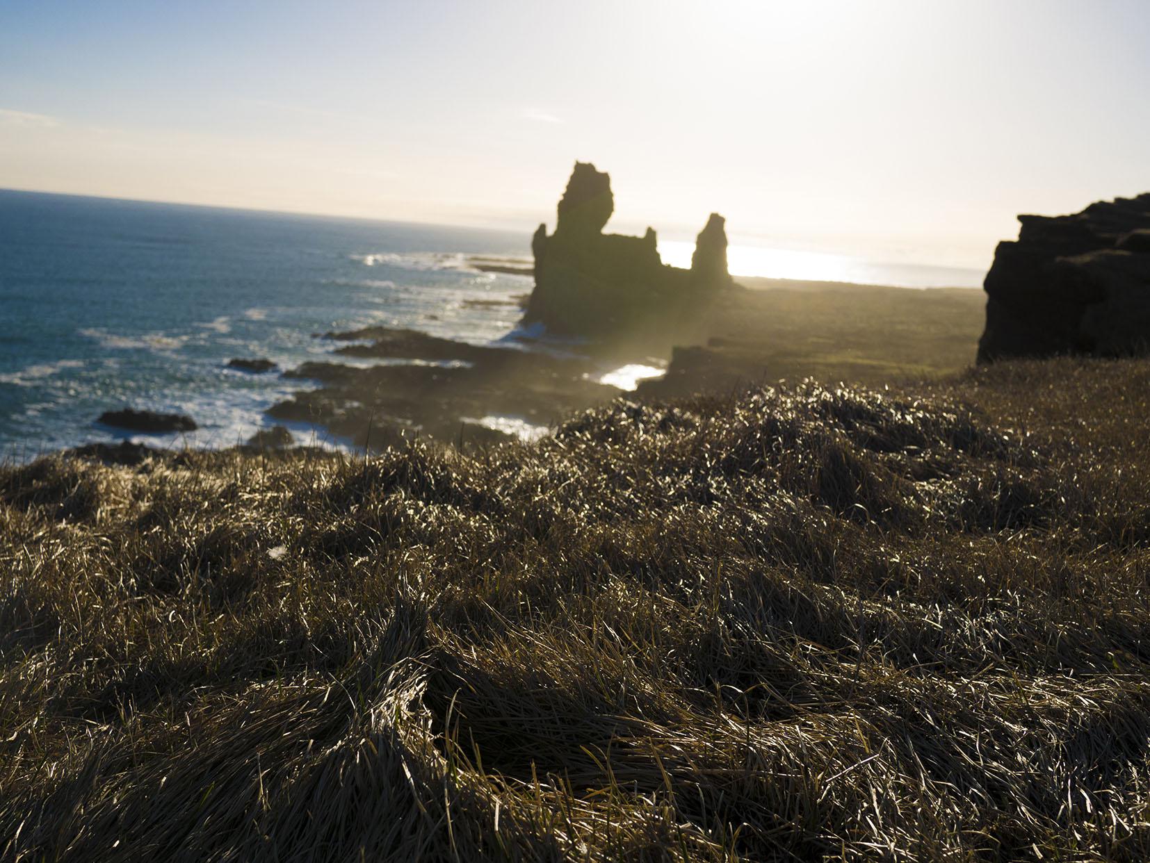Arnarstapi falaises coucher de soleil herbe dorée