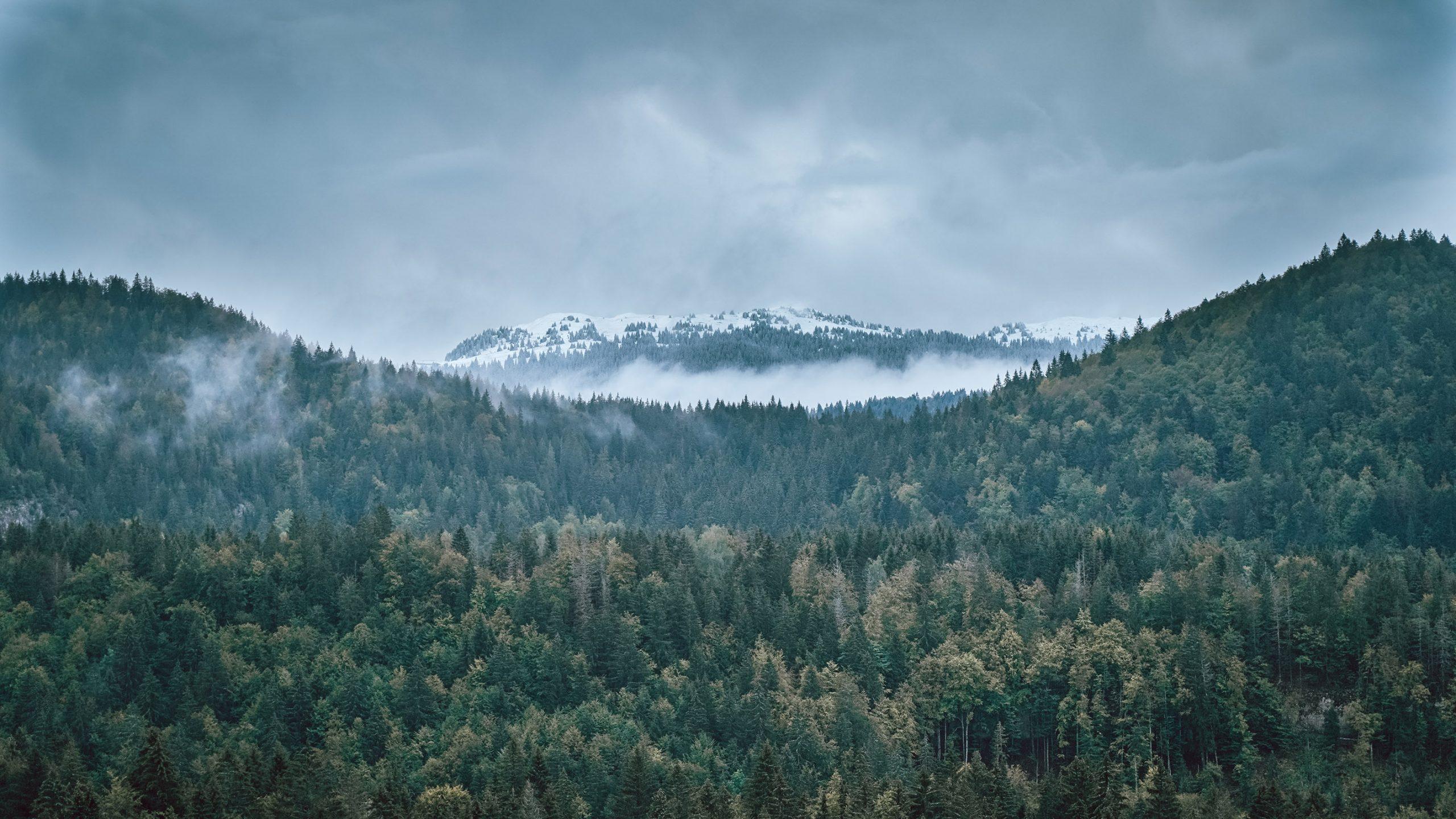 Montagnes Jura automne neige ciel gris