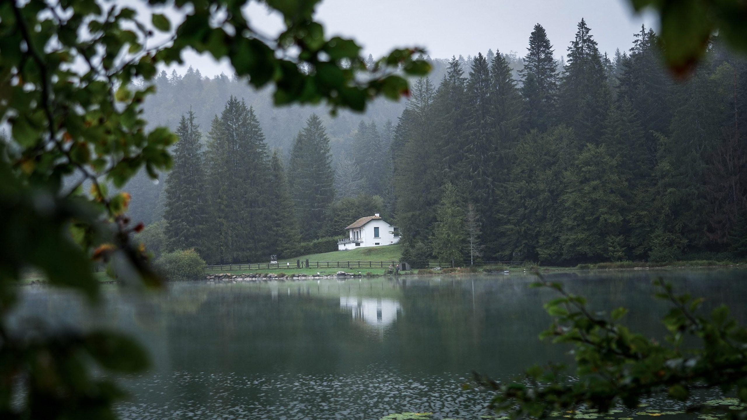 Lac Genin arbres maison brume