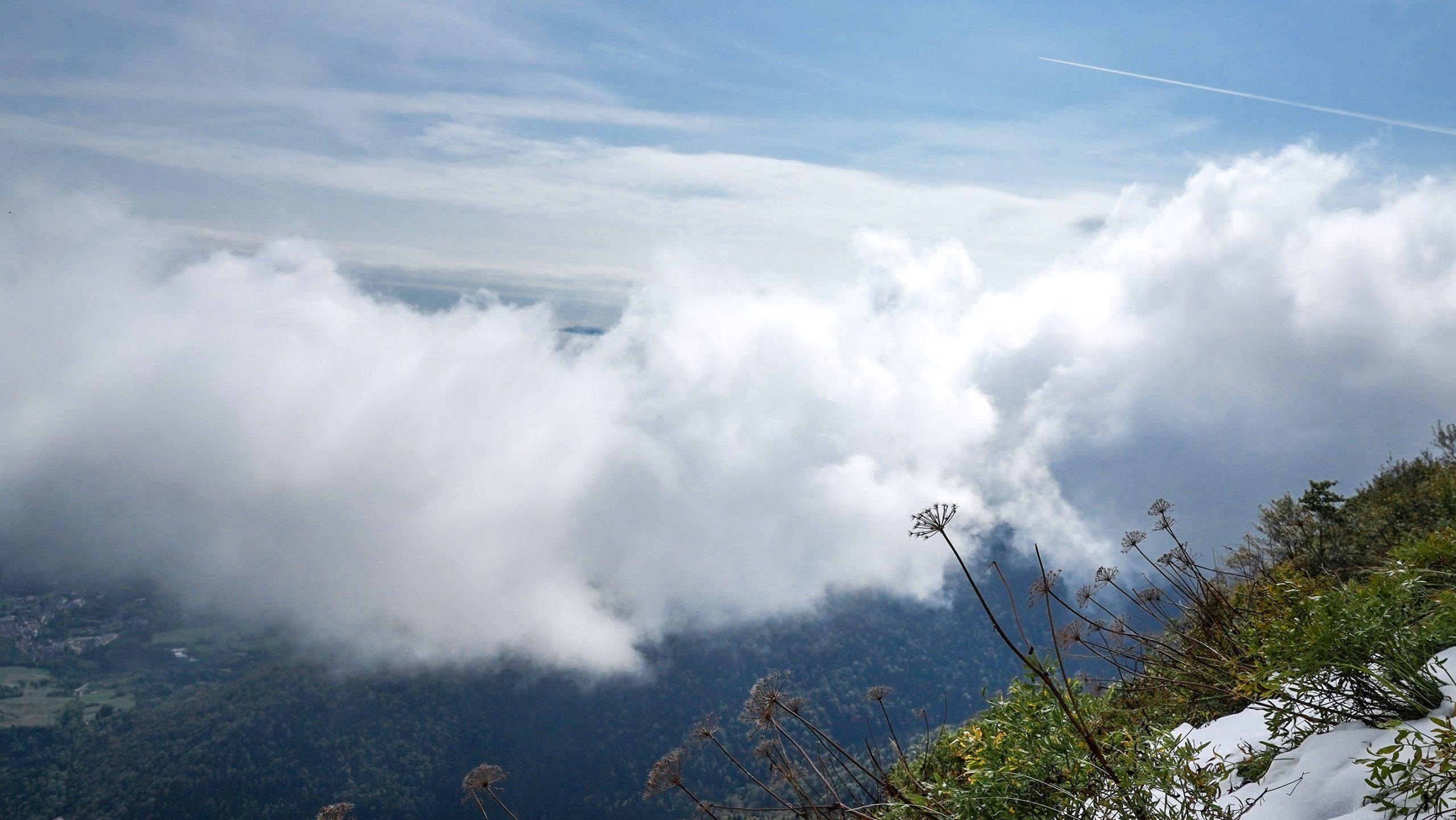 randonnée Petit Mont-Rond nuages fleur vue montagnes Jura