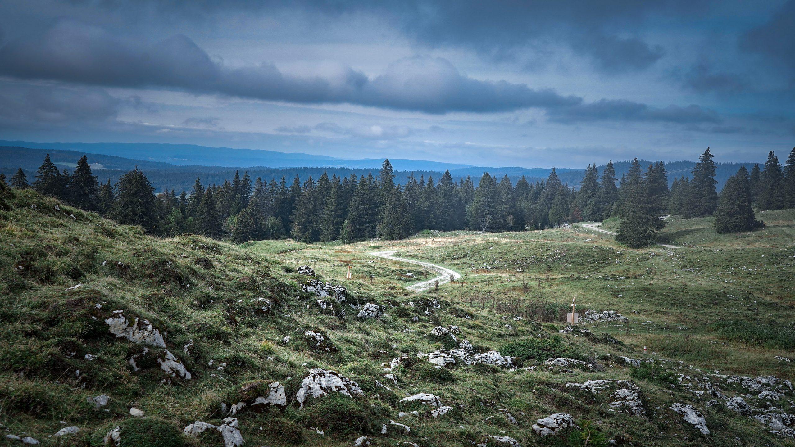 sentier randonnée serpente sapins verdure rochers nuages Grand Mont-Rond