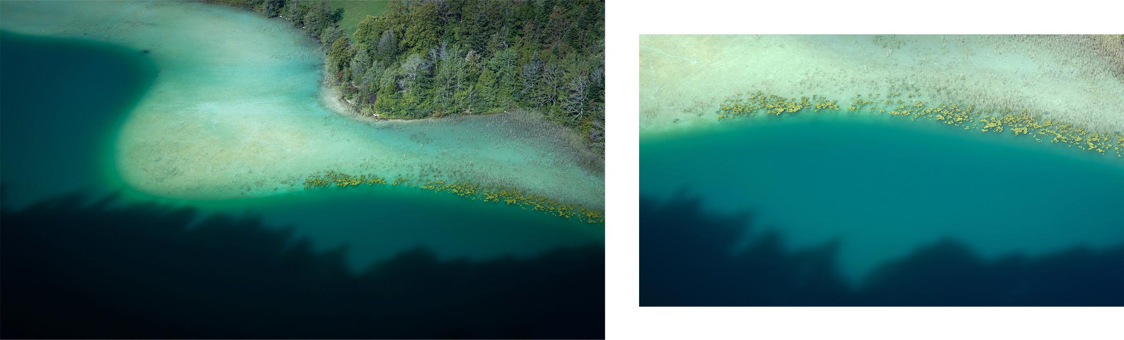 Jura belvédère des quatre lacs courve sapins automne magique