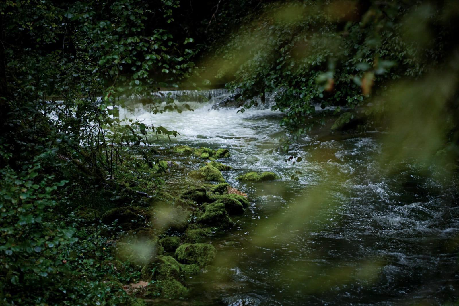 Jura Gorges de l'Abîme ruisseau cascade mousse