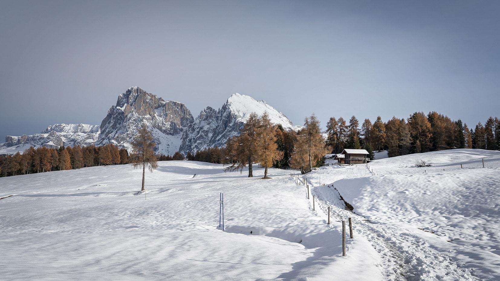 Une semaine dans les Dolomites Alpe di Suisi chemin neige sapint orangés Sassopiatto