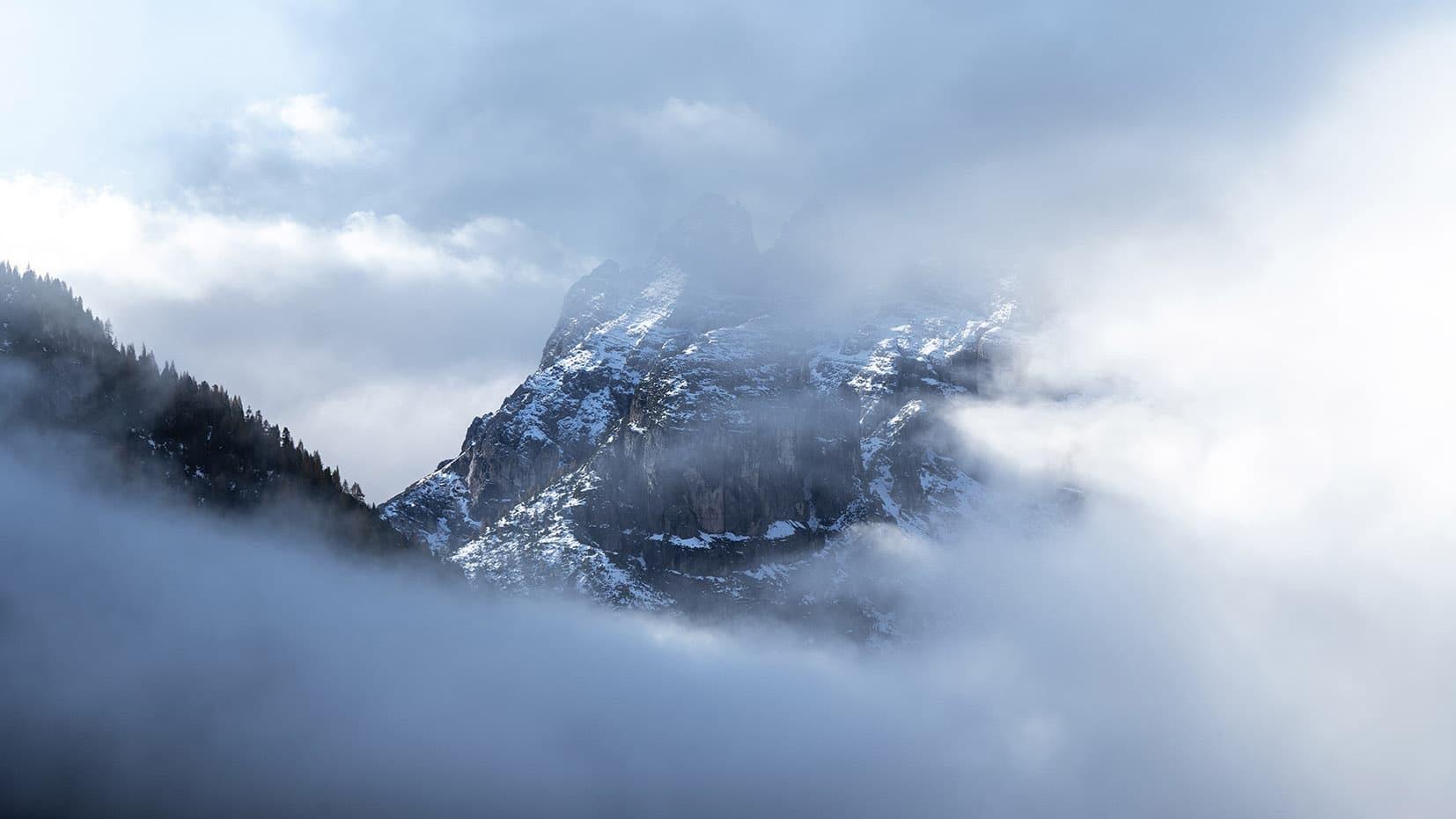 montagne nuages cachée sapins neige