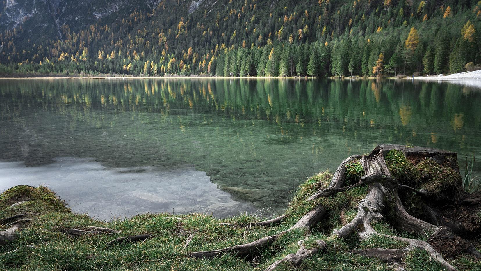 Une semaine dans les Dolomites Lago di Dobiacco eau verte reflet sapins autilne tronc