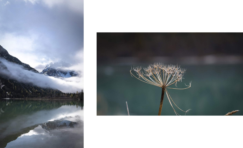 Lago di Landro Dolomites filet nuage montagnes eau détail fleur