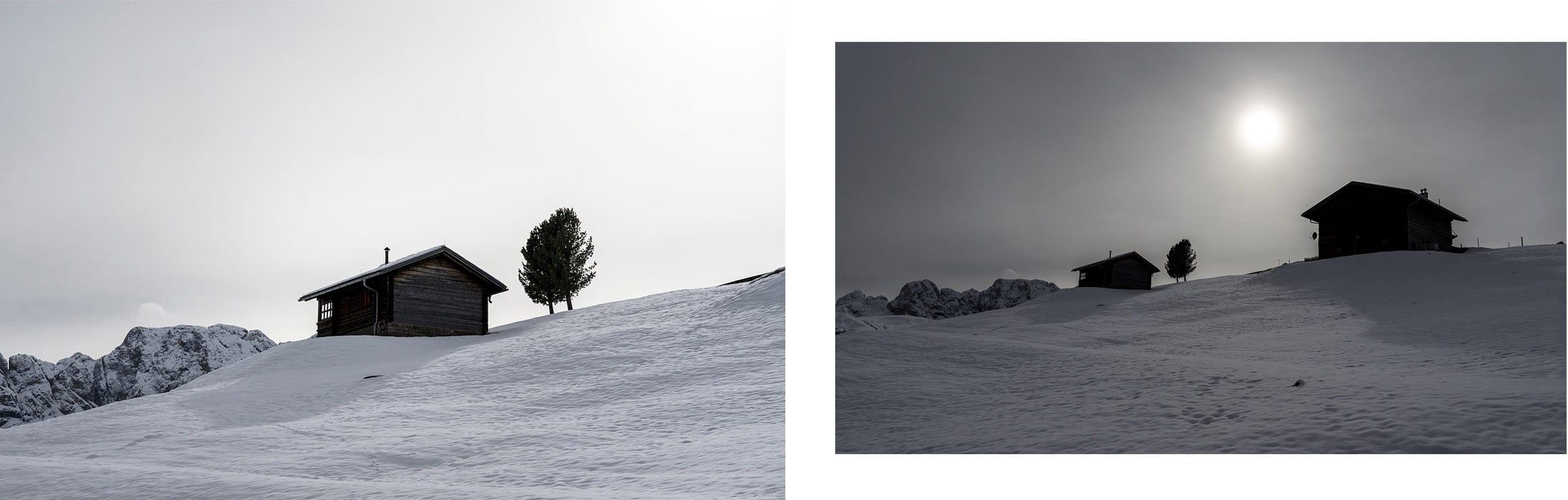 Cabane neige arbre