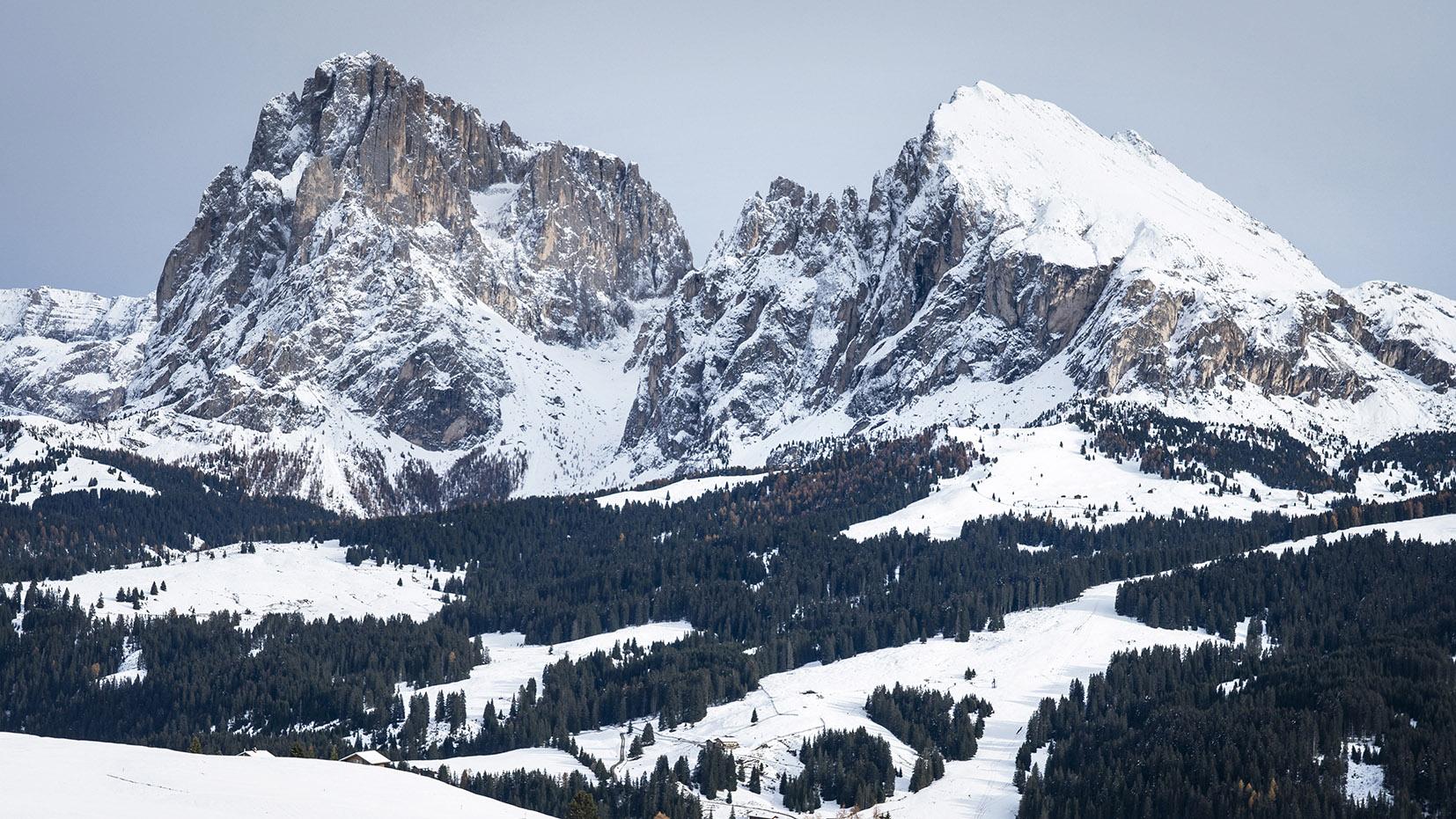 Alpe di Suisi sapins neige montagnes Dolomites