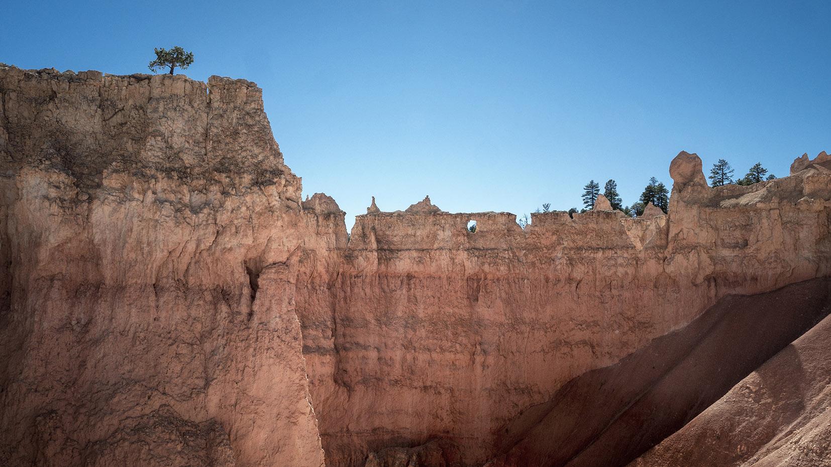 Queens Garden Trail & Navajo Loop roche arbre ciel bleu