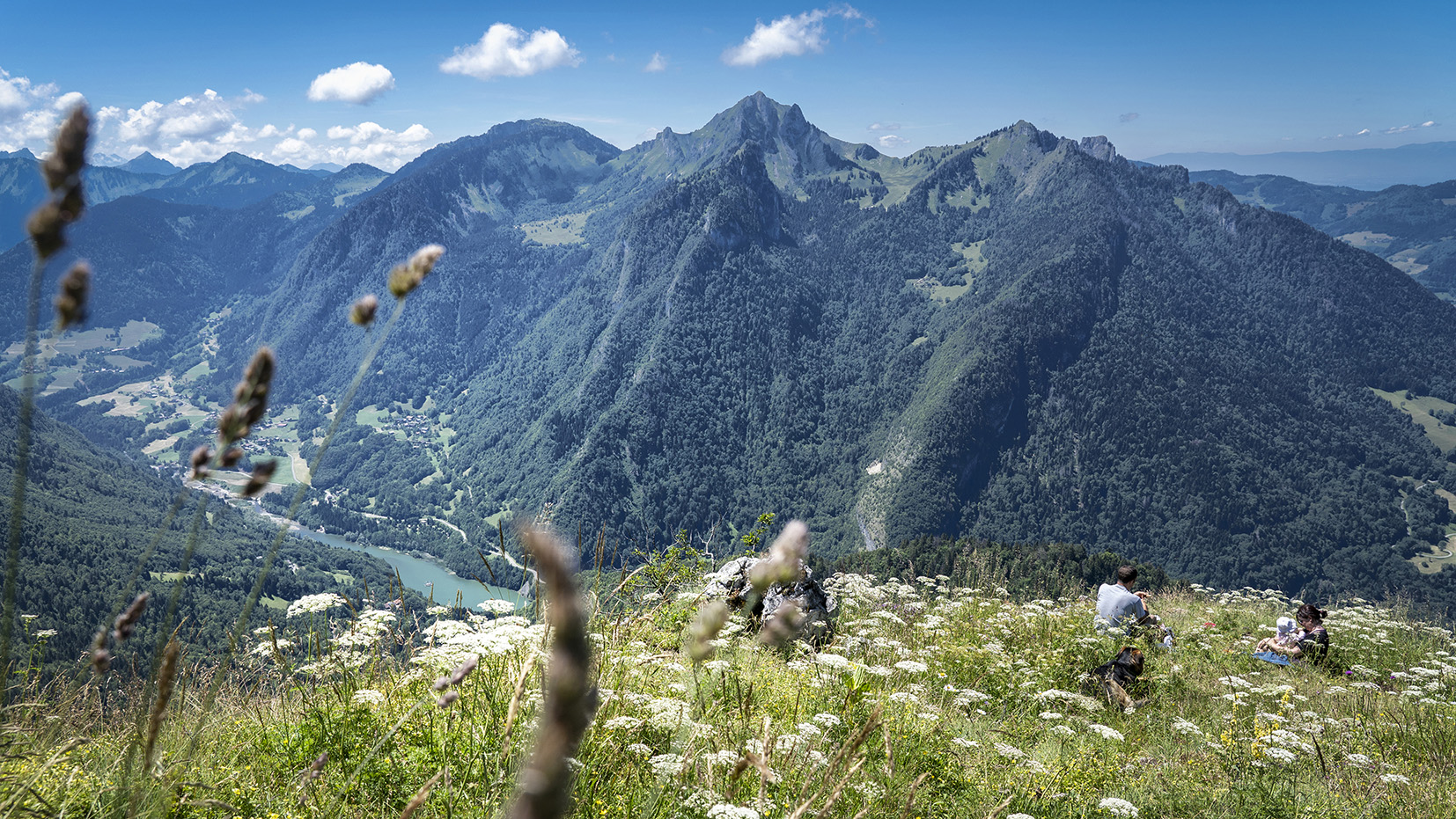Haute-Savoie pointe de Tréchauufé vue montagnes lac herbes hautes couple bébé chien