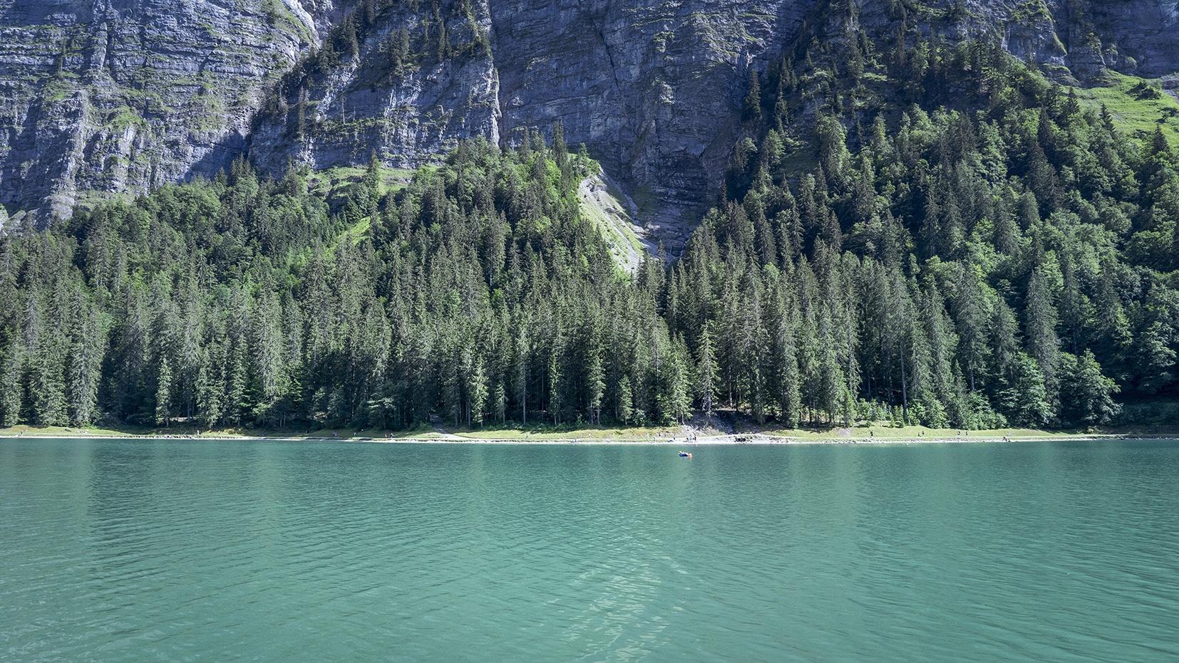 Haute-Savoie lac de Montriond eau verte sapins
